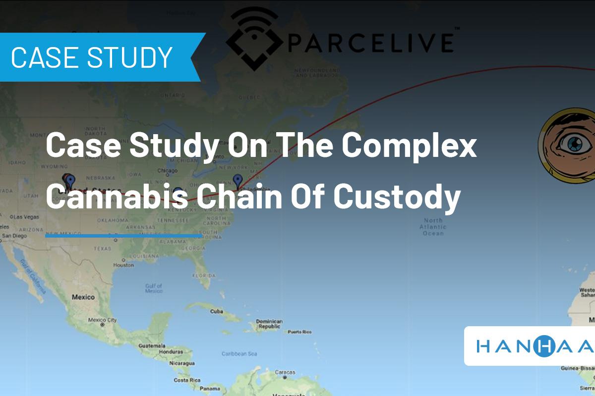 cannabis case study